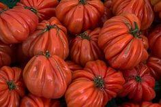 Légumes, Décrochage Du Marché, Tomates