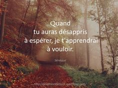 C ptn d'intelligent Lifestyle Quotes, French Quotes, Favorite Words, Smart People, Happy Thoughts, Positive Affirmations, Positive Vibes, Positive Quotes, True Quotes