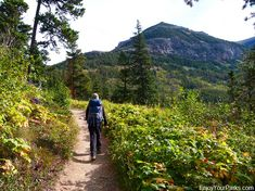 Crandell Lake Trail in Waterton Lakes National Park. Includes the Top Things To Do In Waterton Lakes National Park. Waterton Park, Waterton Lakes National Park, National Parks, Things To Do, Trail, Hiking, Things To Make, Walks, Trekking