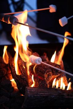 Roasting Marshmallows Over The Open Fire