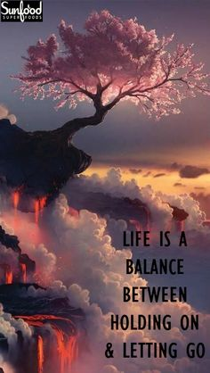 Life is a balance between holding on & letting go.