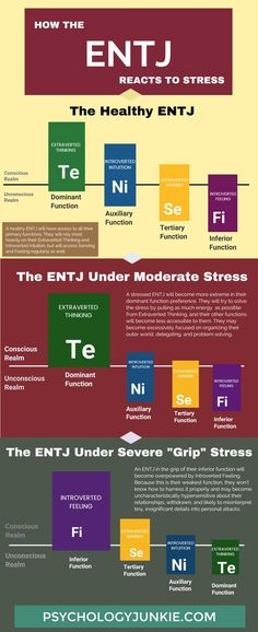 New Infographic! What Really Happens When an ENTJ is Stressed
