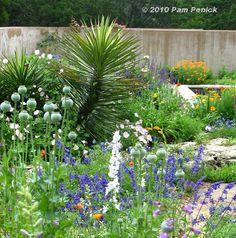 La Vida es.. Pasión: Los Xerojardínes y La Salvia, http://flor-colorada.blogspot.com/2012/10/en-especial-de-los-xerojardines.html