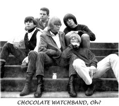The Chocolate Watchband.  The 60's were never more 60-er.