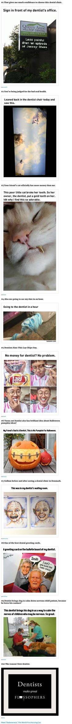10 dentist memes 9 how to choose the right dentist