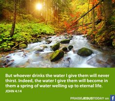"""""""but whoever drinks the water I give them will never thirst. Indeed, the water I give them will become in them a spring of water welling up to eternal life."""" John 4:14"""