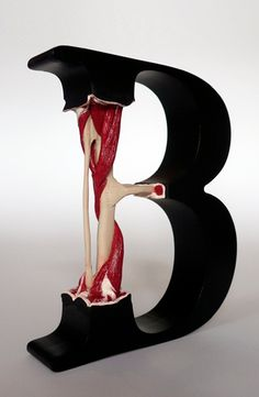 Experimental typography and letter sculpture by austrian designer Andreas Scheiger.