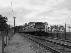 Train approaching Howth station (C) The Carlisle Kid Buses And Trains, Old Trains, Diesel Locomotive, Carlisle, Ireland Travel, The Good Old Days, Dublin, Railroad Tracks, Irish