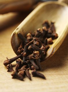 Health Tip: In ayurvedic tradition clove is known for its many health benefits. They temporarily relieve toothache, relieve upper respiratory infections, reduce inflammation, treat scrapes and bruises, improve digestion and improve sexual health. Cloves Benefits, Chocolate Slim, Spices And Herbs, Saveur, Ayurveda, Herbal Remedies, Food Styling, Spice Things Up, Herbalism
