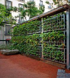 Jardín Contemporáneo