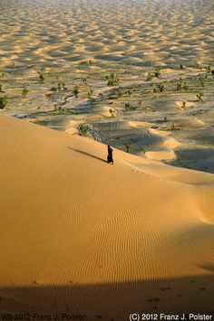 Oman | In the Desert. credit: Franz J. Polster. view on Fb www.facebook.com... #oman #destination #traveltooman