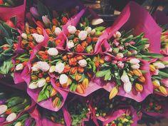 Warning! Do Not Send Flowers For These Occasions — Elaine Swann: Etiquette Expert, Business Etiquette, Lifestyle Etiquette Coach, Children's Manners, Wedding Etiquette