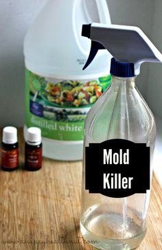 essential oils and vinegar to kill mold