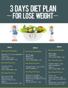 3 Days Diet Plan for Lose Weight | Styles Of Living