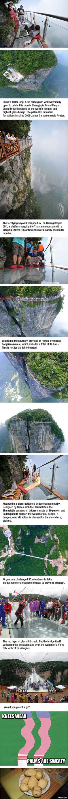 Terrifying 1402m(4,600ft) Glass Skywalk Opens In China, Knees Weak, Palms Are Sweaty - 9GAG