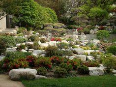 Cómo hacer una rocalla | Cuidar de tus plantas es facilisimo.com
