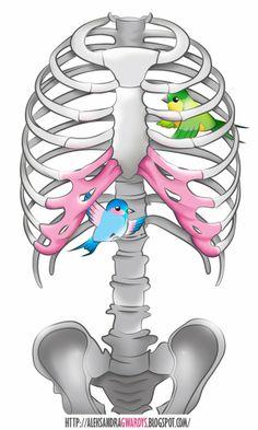 Birds inside human chest.