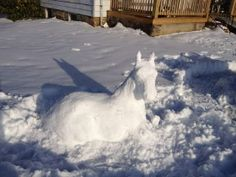 Snow Horse from #WGAL #News such a cool idea!