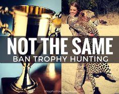 """Shop for your Cause a Twitteren: """"#BanTrophyHunting #AnimalsAreNotTrophies #SaveOurSpecies https://t.co/XpVtgZ0prv https://t.co/8pEmS6S5QJ"""""""