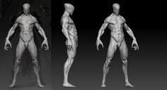 Based on the concept of a totally tough and cool guy Valentin Demchenko Character for game Stormfall: Age of War. Action Pose Reference, Human Reference, Anatomy Reference, Art Reference, Zbrush Anatomy, Man Anatomy, Anatomy Art, 3d Model Character, Fantasy Character Design