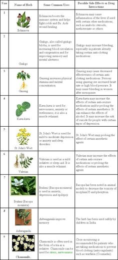 herbs for adhd in children
