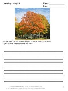 nature in our life essay