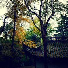 秋の秘境-采石磯