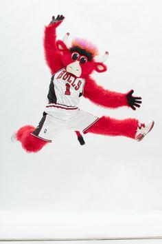 Happy Birthday Benny!! Benny The Bull, Chicago Bulls Team, Basketball Teams, Sports Teams, Home Team, Nba Players, Nascar, Cubs, Room Goals