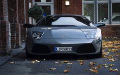 cars gray vehicles Lamborghini Murcielago front view fallen leaves  /
