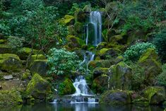 Check out this awesome collection of Japanese Waterfall wallpapers, with 63 Japanese Waterfall wallpaper pictures for your desktop, phone or tablet. Garden Falls, Photography Tips, Nature Photography, Oregon Nature, Portland Garden, Waterfall Wallpaper, Japanese Tree, Walking Holiday, Water