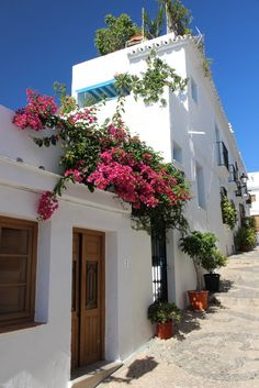Frigiliana, Spain! Anywhere there is cascading Bougainville on whitewashed walls is a place I want to be!