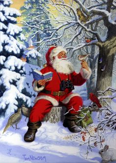 Santa with Birds by Tom Newsom