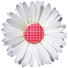 DAISY-RED-PLAID-PNG.png (800×800)