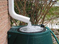 salvando agua da chuva