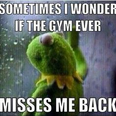 Moving Mountains Motivation: Does the gym miss me?