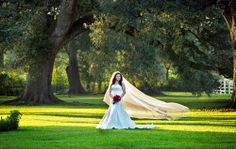 Nottoway Plantation Weddings