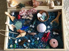 Sensory Box - Ocean Life - Montessori Waldorf Reggio Emilia Inspired, Loose Parts, Sea Life, Seashells, Sensory Bin Sensory Boxes, Sensory Table, Sensory Play, Colored Rice, Sea Crafts, Play Table, Montessori Activities, Ocean Life, Wooden Boxes