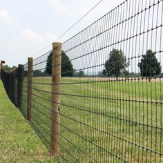 Black Horse Netting Fence