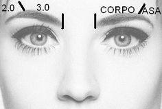 Medidas das sobrancelhas.