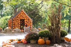 Cheekwood Estate in Nashville, TNcountryliving Pumpkin House, Pumpkin Farm, Nashville Trip, Nashville Tennessee, Best Pumpkin Patches, Autumn Activities, Diy Arts And Crafts, Pumpkin Decorating, Fall Decor
