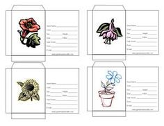 Seed packet templates