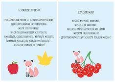 Kuura-ketun syksyinen aistipolku Special Education, Kindergarten, Learning, Words, School, Handmade, Autumn, Peda, Hand Made