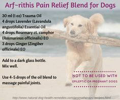 Essential Oils Recipe For Pain Amp Arthritis In Dogs From
