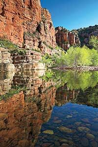 Best Hikes in Arizona: Best Trails in the Grand Canyon State Places To Travel, Places To See, Travel Destinations, Cottonwood Arizona, Sycamore Canyon, Living In Arizona, Western Landscape, Arizona Travel, Best Hikes