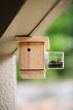 Looking for the quality Bees N Things Carpenter Bee Trap? Please click and view this most popular Bees N Things Carpenter Bee Trap. Wood Boring Bees, Wood Bees, Woodworking Guide, Custom Woodworking, Woodworking Projects Plans, Wood Bee Trap, Bee Catcher, Carpenter Bee Trap, Bee Traps
