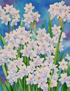NARCISSUS (SOLD) watercolor floral painting - Original Fine Art for Sale - © Barbara Fox