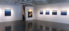 "(l-r) Lisa Grossman ""Sinuous Blue"" SOLD, ""Carving Sand"" SOLD, ""Flying"" series of five"