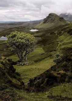 In the vast landscape of the Isle of Skye, Scotland. (Beauty Scenery Europe)  #BeautifulLandscaping