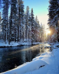 Snow on the Metolius River near Camp Sherman in Central Oregon. --------- @ oregon_outback