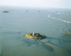 National Park 'Hallig Hooge', Wadden Sea, North Friesland (DE) Am Meer, North Sea, Small Island, Germany Travel, Beautiful Landscapes, Wonders Of The World, Wilderness, Nature Photography, Hiking